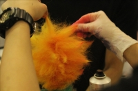AAA_creative grooming1JPG (17).jpg