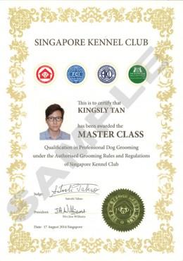 Kingsly-MasterClass
