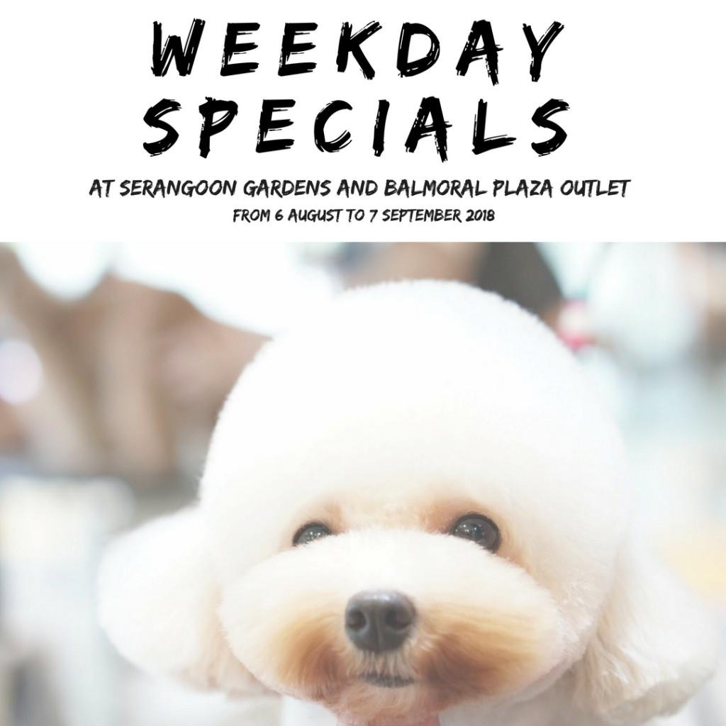 Weekdays special